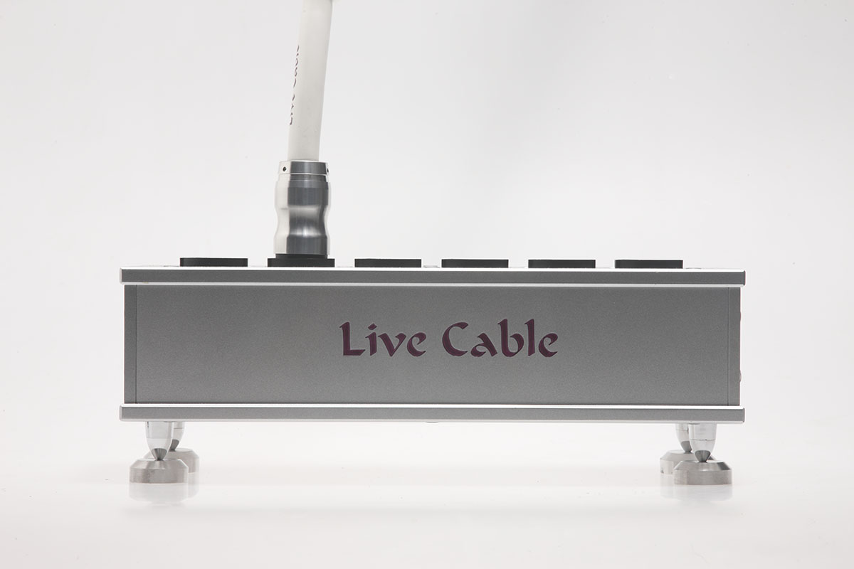 Live Cable - SPC Brancebox Detail #1