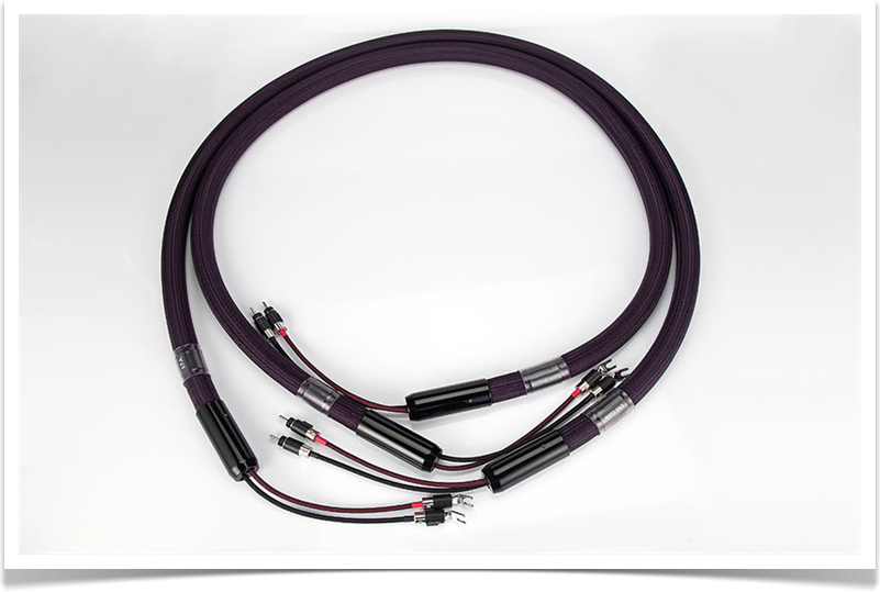Live Cable - SPA LS Cable